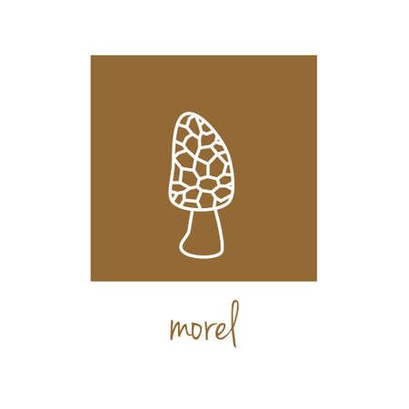 morel: morel icon on brown square