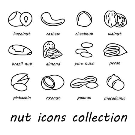 pistachio: vector nut icons collection