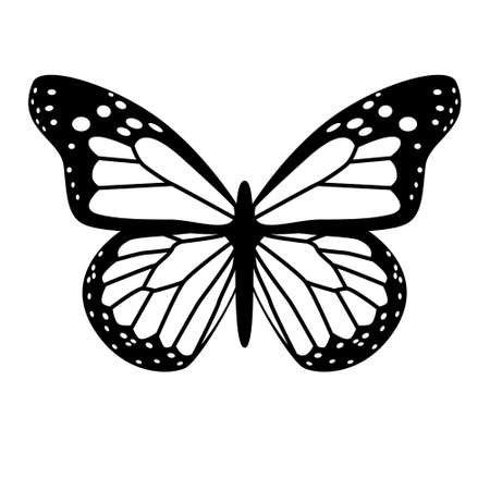 A black and white vector butterfly