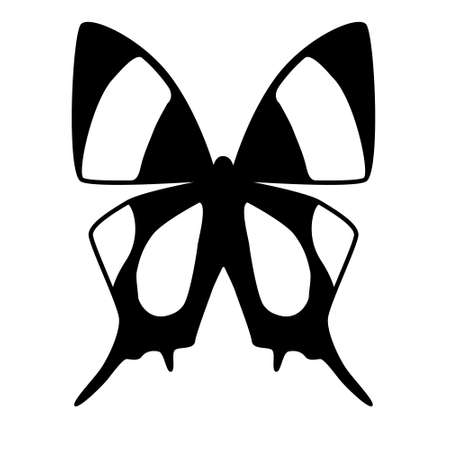 black and white vector butterfly