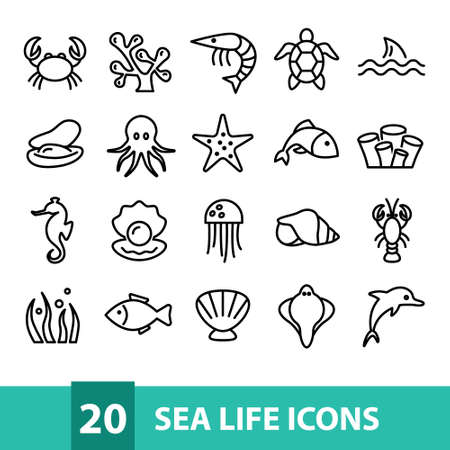 sea life vector icons collection Çizim