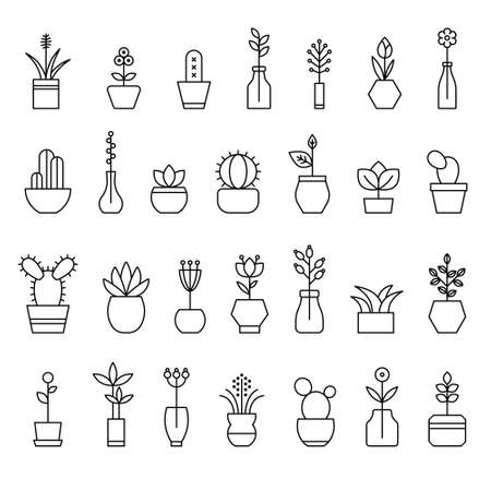 collection of home flowers Иллюстрация