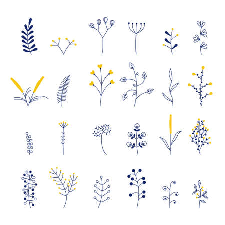 set of beautiful vector flowers