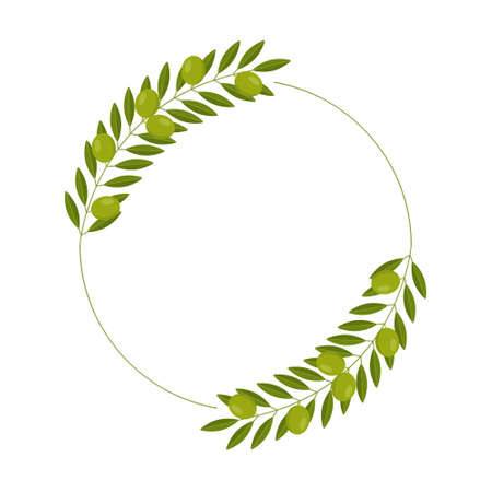 vector wreath with green olives and leaves