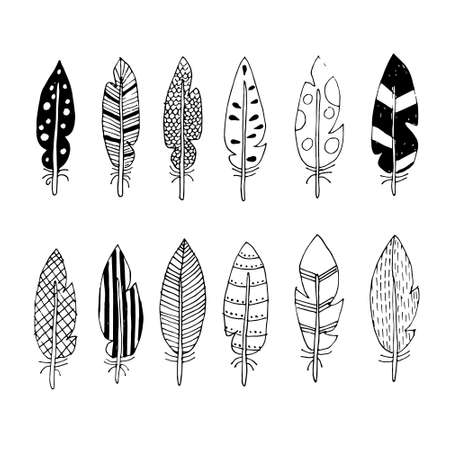 vector feathers with abstract drawings