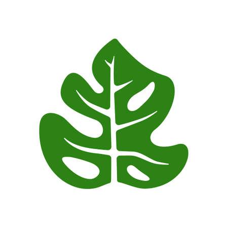 simple vector monstera green leaf