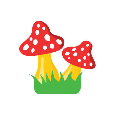 fly agaric on green grass