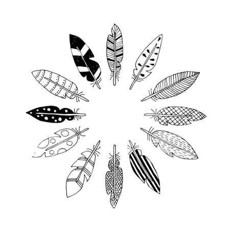 vector drawing feathers in circle 矢量图像