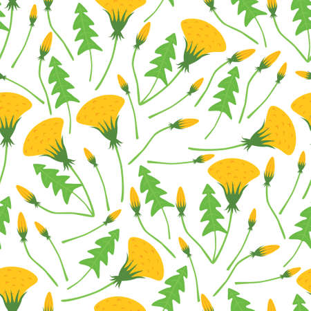 dandelion seamless pattern with white background