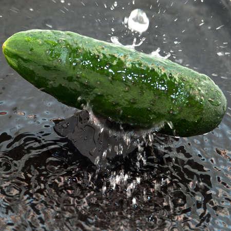 Fresh cucumber splashed with water on black background photo