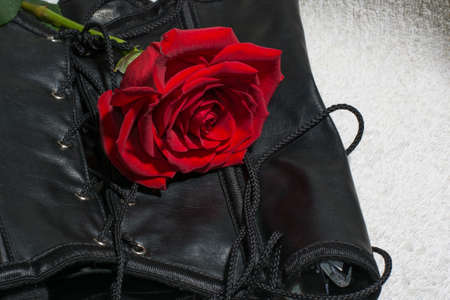 Composition of erotic black corset and rose