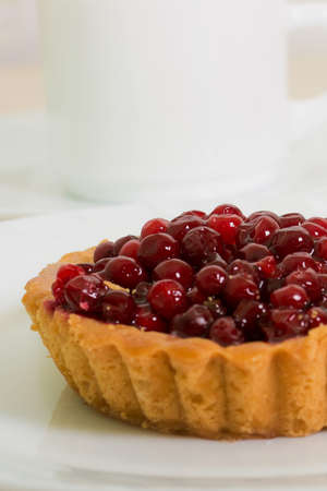 brightest: Sand basket with cranberries on white plate