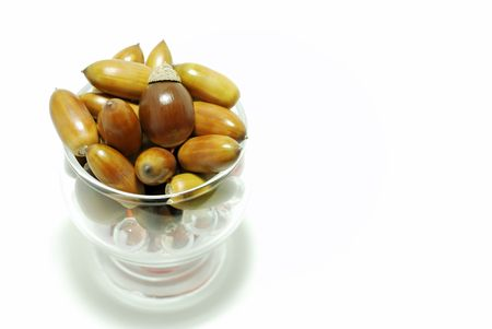 entered: Acorn that entered glass.