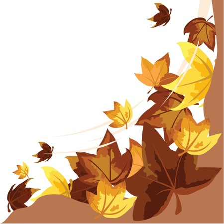 autumn leaves background for seasons and themes design Stock Photo - 7754838