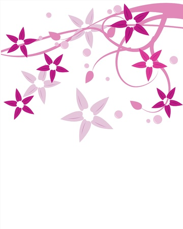 florals and branches for background, designs and others Stock Photo