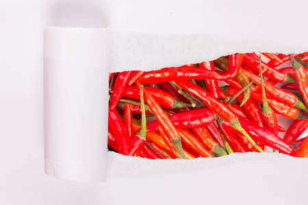 ripped paper on chili peppers photo