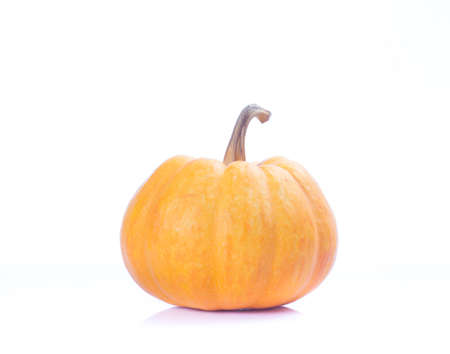 Decorative pumpkin squash isolated on white background photo