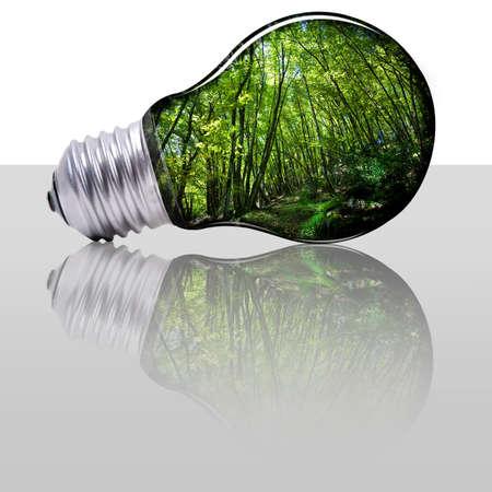 alternative energy sources: eco lamp