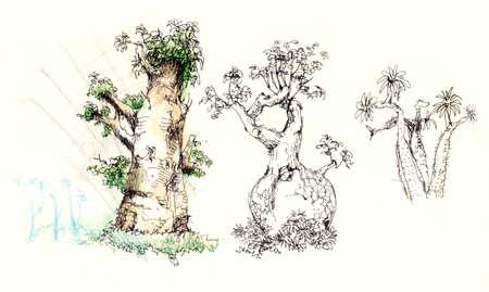 baobab tree illustration, Bottle tree, Palo Borracho Stock Photo