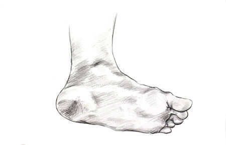 foot pencil drawing black and white photo