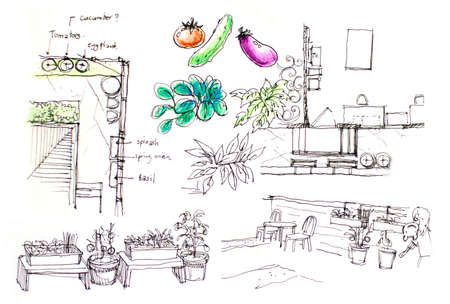 urban planning: urban backyard vegetable garden planning cartoon illustartion Stock Photo