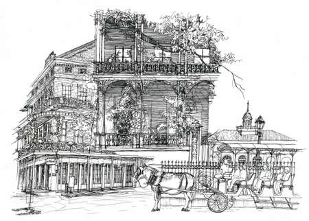 new orleans: New Orleans architectural illustration drawing