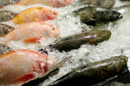fisch eis: Fisch Eis im Supermarkt Lizenzfreie Bilder