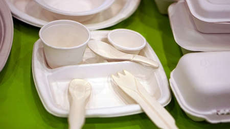 natural biodegradable foam for foodware