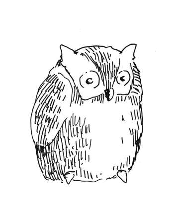 owl hand drawn black and white illustration illustration