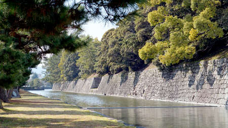nijo: canal water and tree landscape around nijo castle in Kyoto Japan