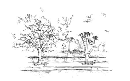 canal: trees and river canal hand drawing illustration Stock Photo
