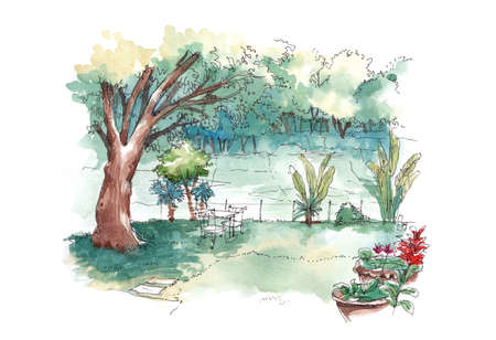 backyard: watercolour painting of green lush tropical backyard garden