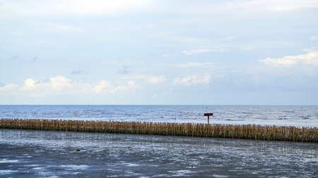 manmade: manmade bamboo fence on mangrove beach