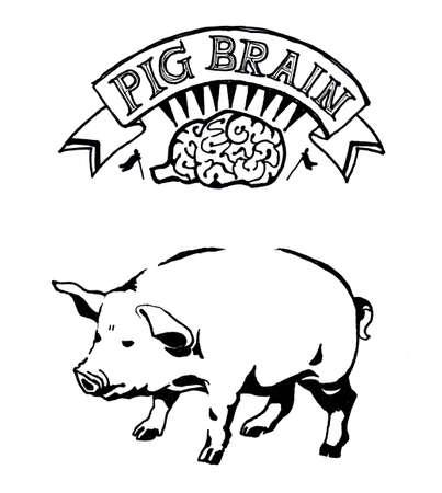metaphor: Pig brain hand drawn illustration. Art and conceptual metaphor
