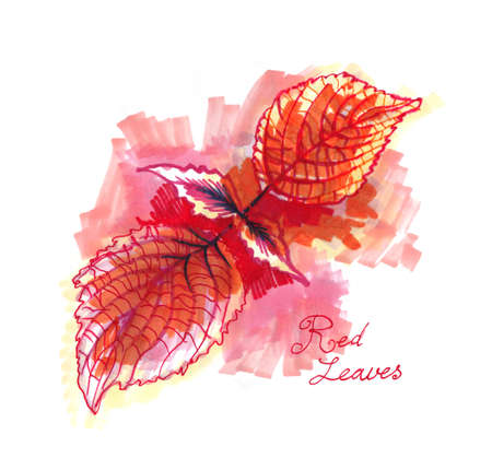 red leaves marker and watercolor painting
