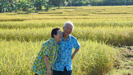 Happy Asian elderly farmer business owner modern technology help on agricultural work