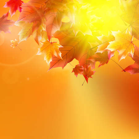 Delicate autumn sun with glare on gold sky