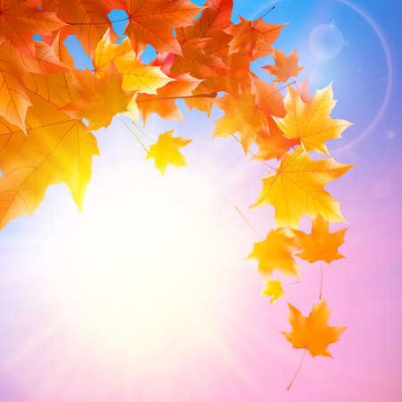 Delicate autumn sun with glare on blue sky  Illustration
