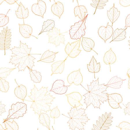 cleft: Autumn leaf skeletons template