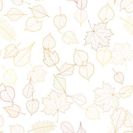 venation: Autumn leaf skeletons template