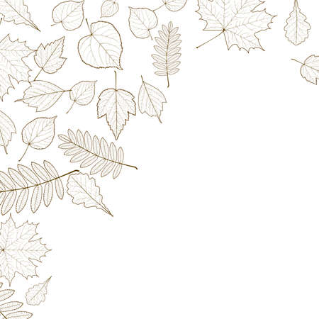 infirm: Autumn color leaves background template  Illustration