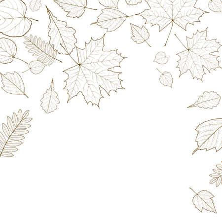 Autumn leaf skeletons template