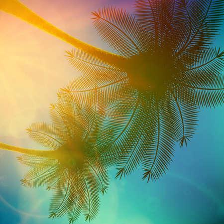 Palmy z pięknym zachodem słońca eps10 Ilustracje wektorowe