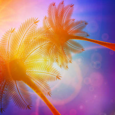 Palm trees with beautiful sunset  EPS10