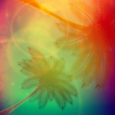 afterglow: Palm trees with beautiful sunset  EPS10