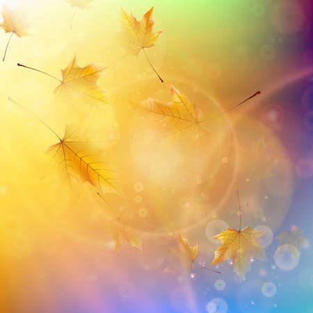 autumn leaf: Orange maple leaves  Autumn concept  EPS10
