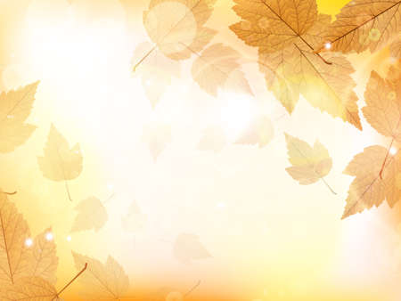 sky background: Autumn design background with leaves falling from the tree  EPS10 Illustration