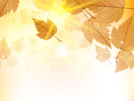 Autumn design background with leaves falling from the tree  EPS10 Ilustração