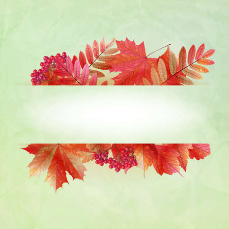 Autumn abstract background with colorful leafs and place for your text.