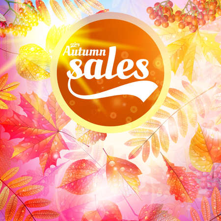 Autumn sale fall yellow leaves nature background.  Vector
